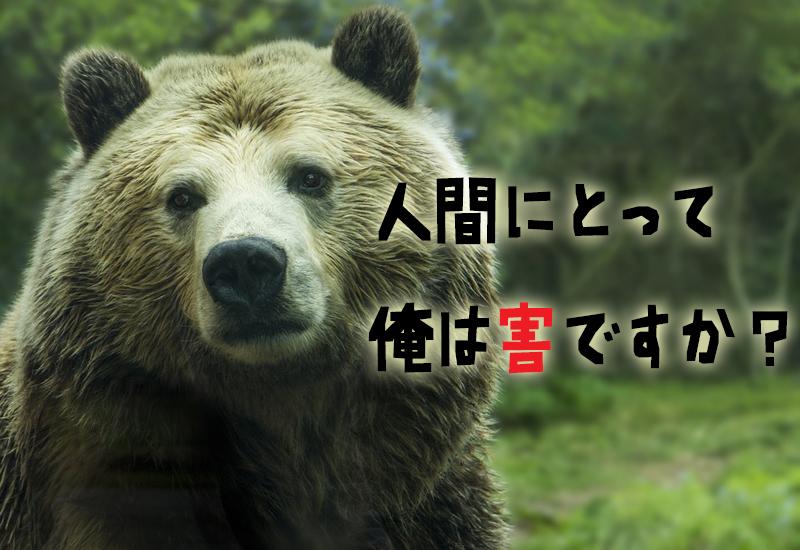 落ち込みがちなクマ