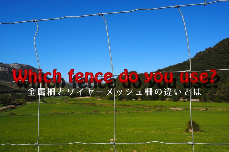 柵の向こう側